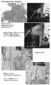 Nagato_research129